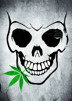 skull pot weed marijuana marihuana bud leaf cool canvas fun funny poster art mouth teeth joint bones