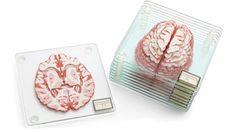 Those are some…interesting coasters from ThinkGeek: http://www.thinkgeek.com/product/huir/?cpg=cj&ref=&CJURL=&CJID=2617611