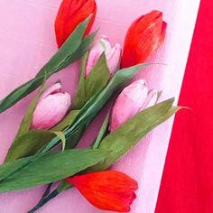 Flora Nordica (@_flora__nordica_) • Фотографије и видео записи на услузи Instagram Flora, Crepe Paper Flowers, Tulips, Instagram, Plants, Tulip