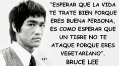 Image in Frases-Phrases collection by Bruce Lee Frases, Bruce Lee Quotes, Inspirational Phrases, Motivational Quotes, Best Quotes, Life Quotes, Spanish Quotes, Sentences, Wise Words