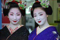 Maiko Mamekiku and Maiko Mamefuji January 2016. This year the Januari kanzashi features Chinese asters, green pines, neon stems and cranes.