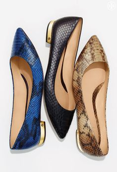 The Ultimate Flat: Exotic Snakeskin, Gold Heel, Pointy Toe - The Tory Burch Bedford Flat http://rstyle.me/n/devhqn2bn
