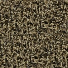 STAINMASTER�Active Family Austere Winslow Frieze Indoor Carpet