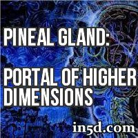 The pineal gland has many interesting and curious connections to spirit. Often called the 'Third Eye' this small endocrine gland, buried deep in the center of the brain, has become the focus of many masters and shamans of the past.