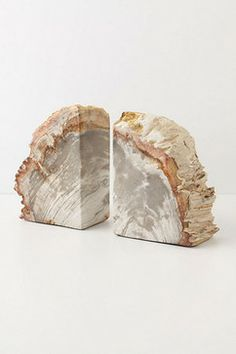 Petrified Wood Bookends - traditional - accessories and decor - Anthropologie