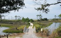Camp Helen State Park.  There are two paths to the beach from the main park area. You can choose to walk along the lake, or a path through the woods, with a dense c...