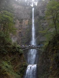 Travel Ideas and Tips: 10 Free Things To Do in Portland,Oregon