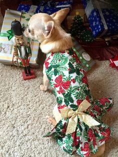 Muñequita models her Christmas Bows dress by Mitzi's Secret