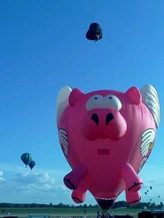 1000+ images about Up, up and away!!!!!!!!!!!! on ...