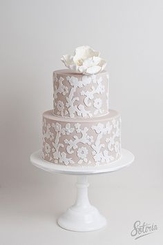 Love white lace over a colored background. I could see this in blue or pink!