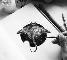 Manta ray                                                                                                                                                                                 More