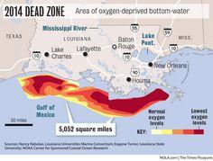 Dead zone along Louisiana-Texas coast seen as size of Connecticut | NOLA.com