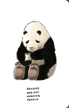 Me either, little panda. Me either.