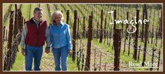 Cabernet, Napa Winery, Napa Wine, Visit Hall Wines in Napa Valley.