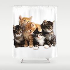 Kittens Shower Curtain Cute Cats And I Love Cutest Baby