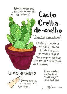 Cacto Orelha-de-coelho (Print A5) Garden Trees, Trees To Plant, Cactus Terrarium, Plants Are Friends, Garden Journal, Succulent Gardening, Tropical Landscaping, Cactus Print, Cactus Y Suculentas