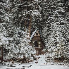 Determined resolutions. #getoutdoors #upknorth Cabin goals for the new year. Shot by @emitoms (at Franklin Falls)