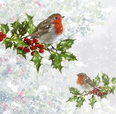Robins by The Macneil Studio Framed Art - Multi Christmas Bird, Christmas Scenes, Vintage Christmas Cards, Clipart Noel, China Painting, Decoupage, Christmas Printables, Christmas Pictures, Bird Art