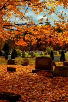 New England as the Leaves Change ☮ * ° ♥ ˚ℒℴѵℯ cjf Autumn Aesthetic, Witch Aesthetic, October Country, Autumn Scenery, Autumn Day, Autumn Nature, Hello Autumn, Fall Photos, Autumn Inspiration