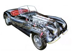 "1964 Jaguar XK-E Sports Car Advertisement Print ""A Different Breed of Cat"" Man Cave / Garage / Bachelor Pad Wall Art Decor Cutaway, Jaguar Roadster, Jaguar Cars, Retro Kunst, Jaguar Xk120, British Sports Cars, Car Advertising, Hai, Hot Cars"