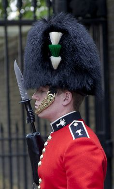 Regiment of Welsh Guards, the Household Division.