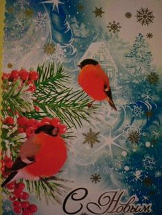 Received from Russia (Vegerle) Christmas card Tag