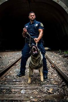 Postagens interessantes - Google+ War Dogs, Military Working Dogs, Military Dogs, Police Dogs, Men In Uniform, Cop Uniform, German Shepherd Dogs, German Shepherds, K9 Officer