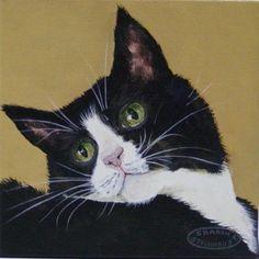 Retratos del gato.  Topacio