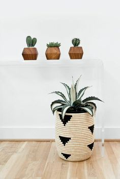 I need a houseplant in a basket like this.  Maybe hand paint a design onto the inexpensive ikea baskets they have right now?