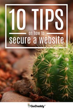 Lock it down: 10 tips to protect your website from hacks.