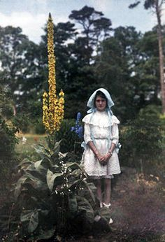 Iris Laing, 1910.  England, autochrome photo