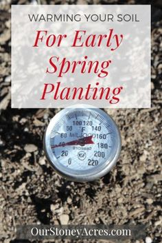Use this gardening trick for Warming Your Soil in the Spring. This lets you get planting several weeks earlier. Backyard Vegetable Gardens, Garden Pests, Herb Garden, Organic Gardening, Gardening Tips, Hydroponic Gardening, Growing Carrots, Spring Plants, Grow Your Own Food