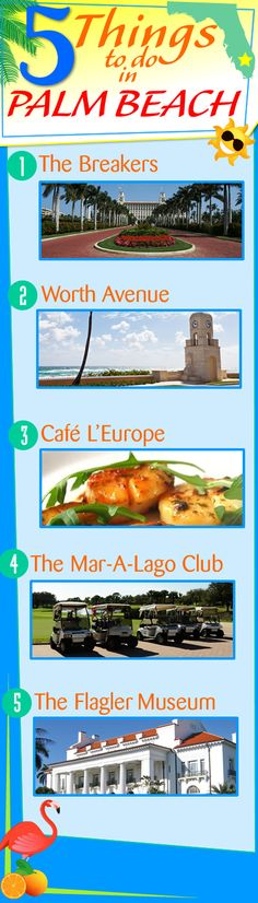 5 THINGS to Do in PALM BEACH!