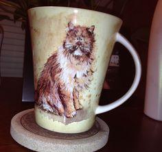 Bone china coffee cat by Churchill. Alex Clark   Canton trades day 2014