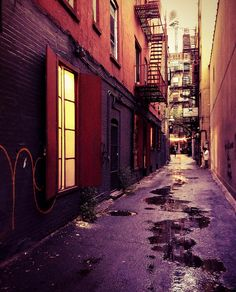 Urban Photography Theme: Back Alley New York City Alley Photograph  - New York City Alley Fine Art Print by Vivienne Gucwa