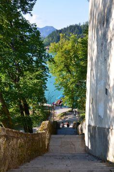 Bledi-tó (29)