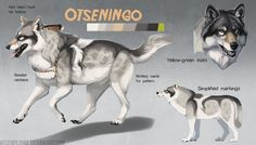Otseningo's reference by KFCemployee on DeviantArt