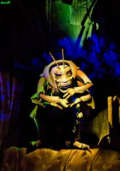 Animal Kingdom - It's Tough To Be A Bug by Tom.Bricker, via Flickr