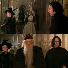 The Chamber of Secrets Snape Harry Potter, Harry Potter World, Hogwarts Professors, Hp Movies, Alan Rickman Severus Snape, Severus Rogue, Maggie Smith, Harry Potter Collection, Harry Potter Pictures