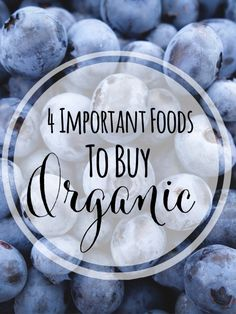 4 Important Foods to Buy Organic | Curious about buying organic food? See below to get the low down on what's important to buy organic when shopping for produce.