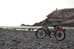 Mopet in the beach (Essauira)