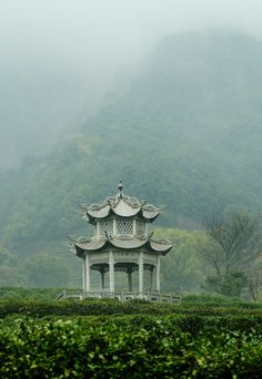 hmmm, what i'd give to sit alone and have tea here in the mist!!..K.R..so beautiful... Pagoda in tea fields, Hangzhou, China