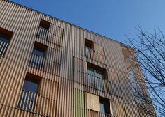 Parisian housing scheme is encased in a timber cage