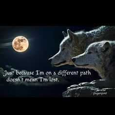 """Shop """"Forever"""" Two Wolves and a Full Moon Guest Book created by DakotaInspired. Personalize it with photos & text or purchase as is! Wolf Spirit, Spirit Animal, Totems, Lone Wolf Quotes, Wolf Qoutes, Two Wolves, Grey Wolves, Wolf Images, Wolf Photos"""