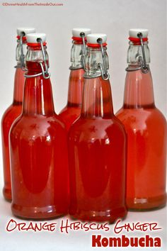 Orange Hibiscus Ginger Kombucha | Divine Health This is made by soaking herbs and then adding the water to the KK.