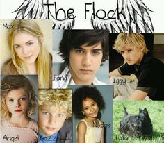 Maximum Ride...........Great Book Series By James Patterson This would be the perfect cast for the movie!!!! ♥