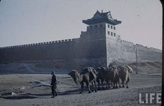 old city wall of Beijing in 1946