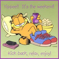 Garfield, sorry to have to break it to you but your weekend is over...