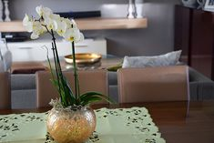 Verde na Decoração! Home Decor, Shades, Environment, Green, Decoration Home, Room Decor, Interior Decorating