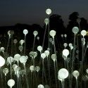 Bruce Munro announces plans for Solar Powered Field of Light at Uluru (1)
